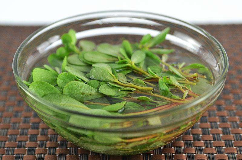 gemisschter Salat Rezept